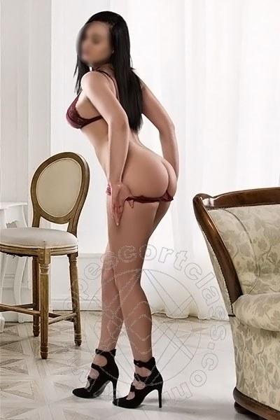Ella Novit�  VIAREGGIO 3512914910